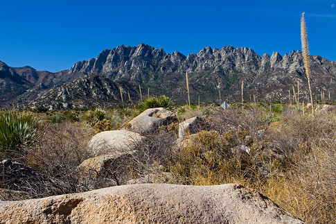 Organ Mountains from Aguirre Springs campground, NM