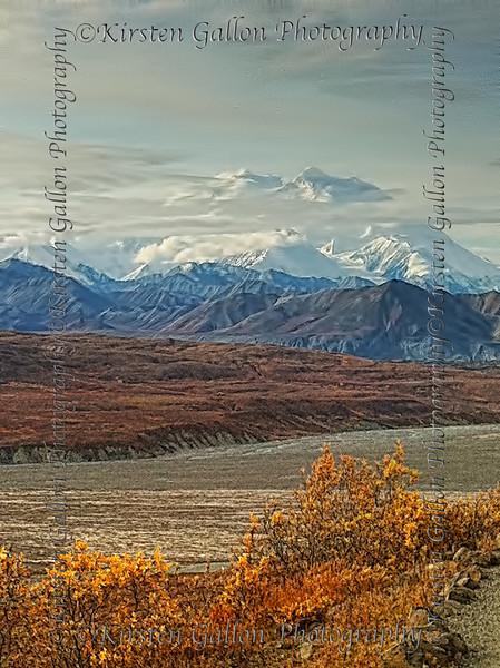 Mt. Denali.
