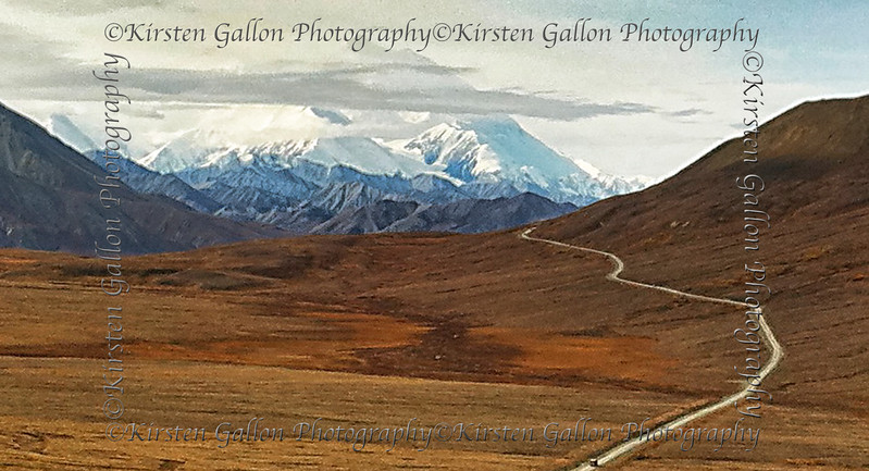 The road to Denali.  That is Mt. Denali/McKinley in the background.