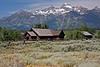 001d Yellowstone-8689