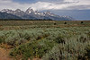 001c Yellowstone-8683