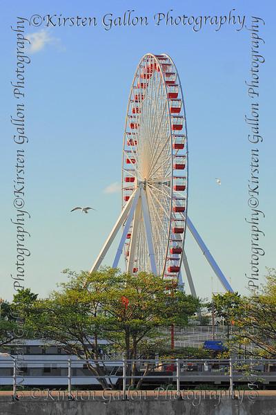 Ferris Wheel at Navy Pier.
