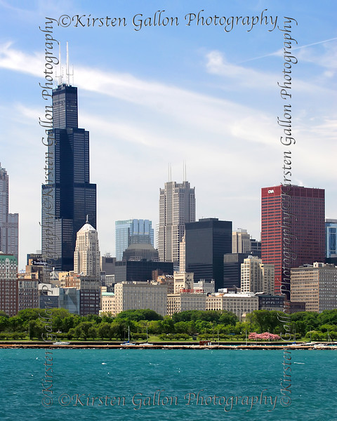 Sears/Willis Tower and more as seen from the planetarium park.
