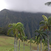 Valley of the Temples, Kaneohe, east Oahu