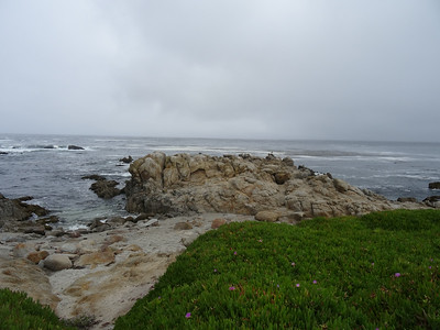 Monterey May 2014
