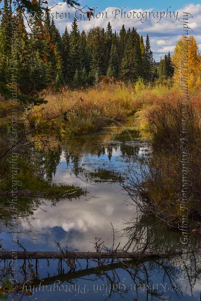 Montana_1765a