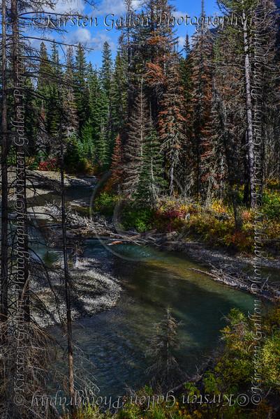 Montana_3153a