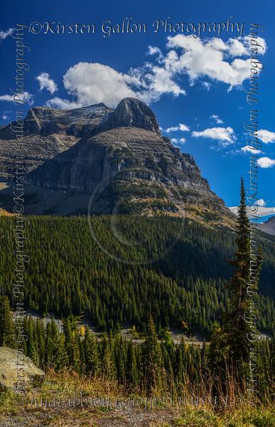 Montana_2891a