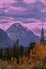 Montana_3855a1