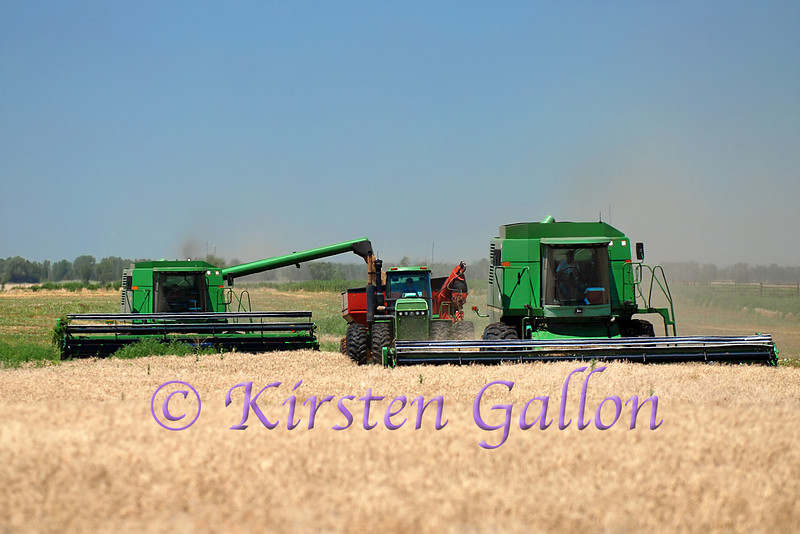 After unloading the first combine, the tractor slows down to hook-up with the next combine.  Everybody just keeps on rolling.