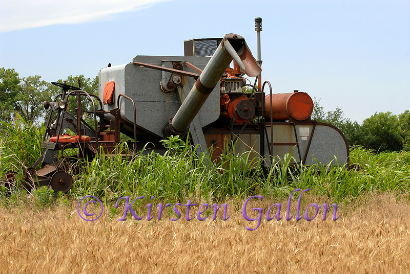An old Allis Chalmers combine sitting in a wheat field.  With all the technological advances in the machinery today, most current farmers can't imagine what it would have been like to have to cut wheat with one of these.  No air conditioned cab!!