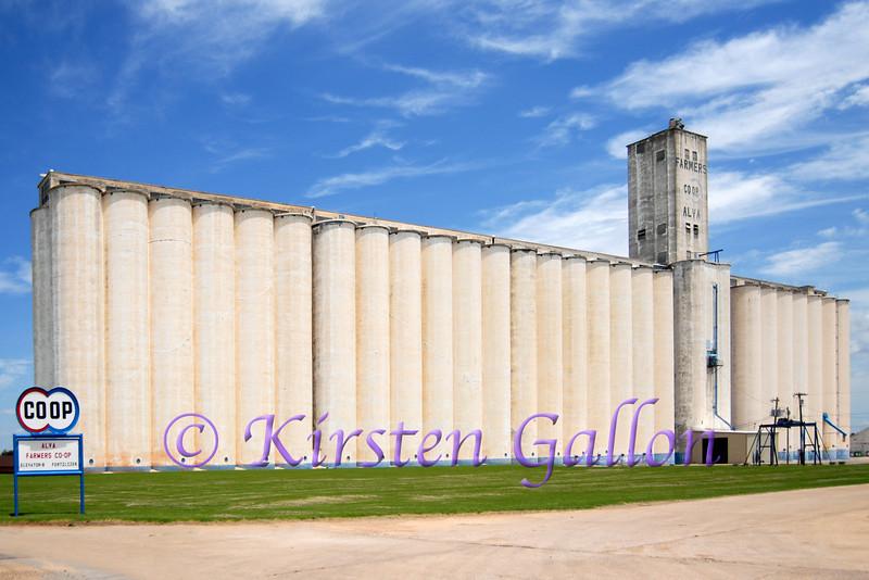 Farmers CO-OP grain elevator in Alva.
