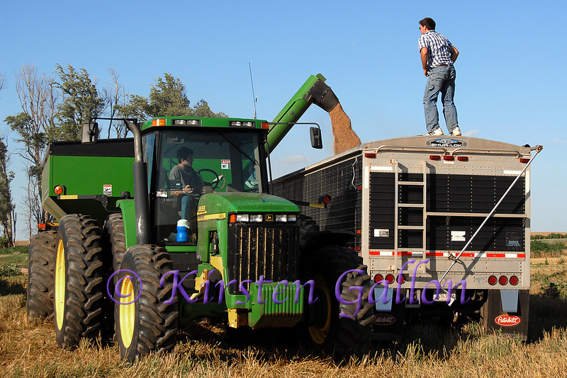 The truck driver stands atop  the bed of the truck to help guide the tractor driver as he transfers the grain.