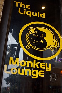 Liquid Monkey Lounge