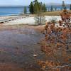Yellowstone: West Thumb Geyser Basin