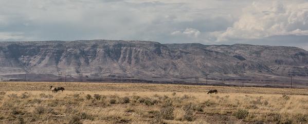 Grand Canyon - South Rim 2014