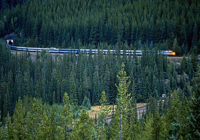 September 1988.  The eastbound VIA Canadian will soon pass over the lower entrance to the first of two loop tunnels on CPR's Kicking Horse Pass.  The Canadian later was rerouted north on the CN via Yellowhead Pass.  This was taken from a viewing platform built to view the loop, but the view is now obscured by growing trees and the platform abandoned.  The popular Rocky Mountain Express still uses this route during the summer.
