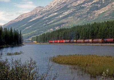 September 5, 1988.  A westbound grain train meets the eastbound Canadian at the summit of Kicking Horse pass. Summit Lake is in the foreground.