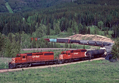 A westbound manifest comes down the steep grade on the westside of Crowsnest Pass heading for Cranbrook.  This is the tight horseshoe curve at Fabro.  June 1990.