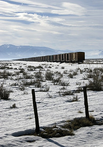 March 10, 2008.  A line of stored boxcars stretches as far as the eye can see on a cold March morning. The Loyalton Industrial Lead, formerly the WP Loyalton branch, served a lumber mill. The mill is gone and the line is up for abandonment. The bleakness of this image reflects the future prospects for both the tracks and the cars.