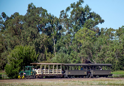 """September 2, 2019.  An SPCRR passenger train at Ardenwood Farm.  The regular passenger trains are now """"critter"""" powered.  Until around 2013 they were horse powered since the SPC Centerville branch which the Arden Farm line is modeled after had been horse powered throughout its life.  But I guess demand outstripped the capacity of one horse."""