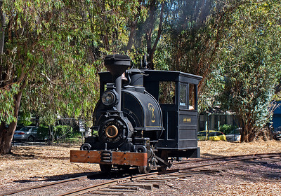 """September 2, 2019.  The Ann Marie is a little Porter 0-4-0T, originally 30"""" gauge, built for Cortez Mining (near Battle Mountain, Nevada).  After the mine closed before World War One the little engine ended up as an exhibit at a Las Vegas casino.  The engine is now privatly owned, restored,  and rebuilt to 36"""".  The name was added by the current owners.  Here it is operating for the Society for the Preservation of Carter Railroad Resources (SPCRR) at Ardenwood Farms Park in Fremont, CA."""