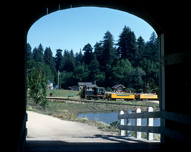 "Ex-Sumpter Valley, ex-DRGW 50 at Roaring Camp.  The 50 later went to the Colorado Railroad Museum and was replaced by a different ""critter""."