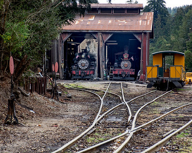 March 7, 2020.  The Dixiana Shay, the original power for Roaring Camp, and No. 2, the ex-West Side Lumber heisler No. 3, sit in the engine house while No. 2 gets steamed up for the days work.