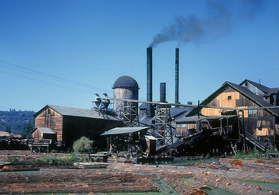 Westside Mill at Tuolumne.  October 1960.