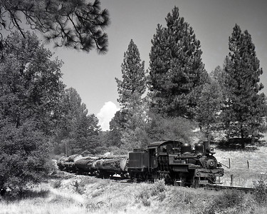 A train of logs arrives into Tuolumne during the West Side Lumber Company railroad's last year of operation.  October 1960.