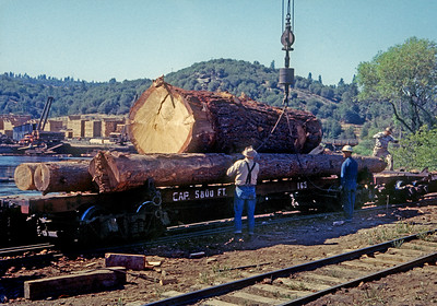 Unloading at the mill.  October 1960.