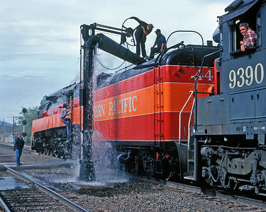 April 1981.  A northbound SP 4449 special takes water at the water plug at Black Butte. The SP maintained plugs at Black Butte and Wicopee for filling fire train tank cars. Both are now gone. I like how the guy climbing into the cab looks, vintage clothing for the era.