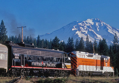 Two very unusual visitors greet the early sun at McCloud as they prepare to pull a Trains Unlimited special back over the hill to Mount Shasta City.  July 2005.