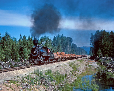 "July 1961.  Rayonier 90 heads a log train southbound from a loading point near Quinault to the dump at Hoquiam. The specific location of this picture is lost in my fading memory, but this is probably near Neilson and just south of where the current Moclips highway crosses the right of way. Rayonier operated the last major steam powered logging railroad in the Pacific Northwest with a mix of power that included several 2-6-6-2 mallets. I made one quick visit in the summer of 1960 but many of the details of the operation are lost off my personal hard drive. No. 90 survives and is now on static display at Garibaldi, OR. My wife and I recently drove between Hoquiam and Quinault and I could find no evidence that a railroad ever existed, it rains a lot on the Olympic Peninsula and the trees and brush grow quickly. But I did learn that Humptulips means ""hard to pole"" in the local Quinault language, referring to the difficulty of poling their canoes along the Humptulips River."