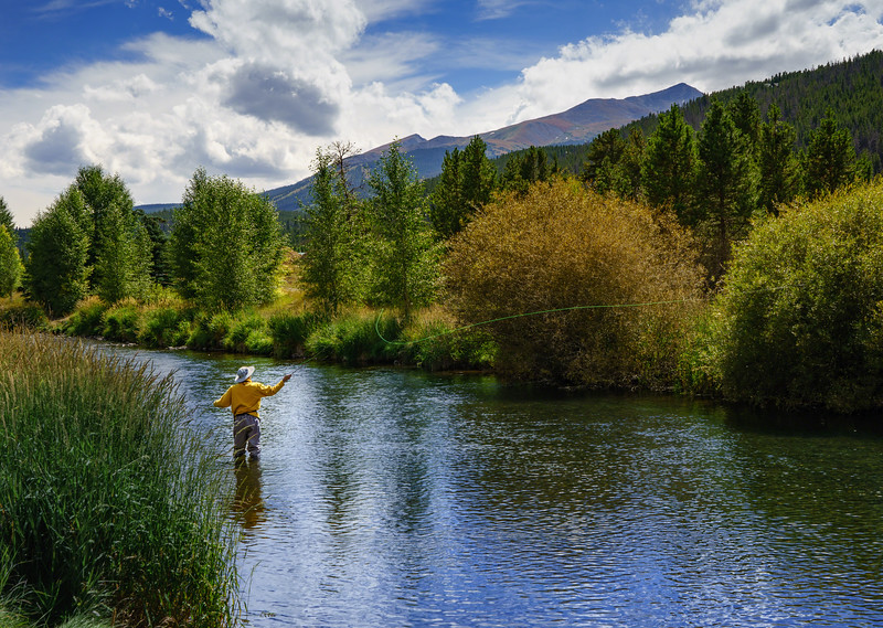 Breckenridge Flyfishing on Blue River
