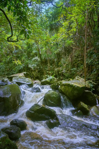 Waipio Valley Stream