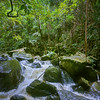 Waipio Valley Stream