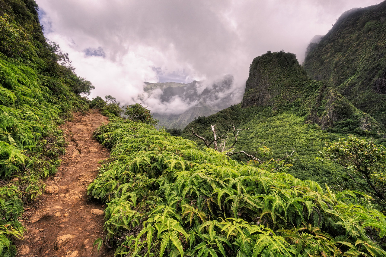 Iao Vally trail © IntentionallyLost.com