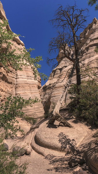 Tent Rocks-The Lean