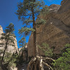 Tent Rocks Lone Pine