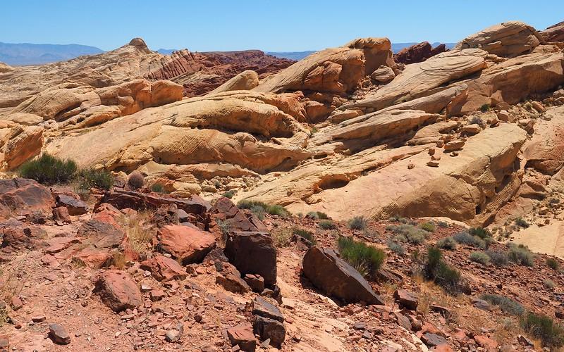 Warm desert shades as far as the eye can see.