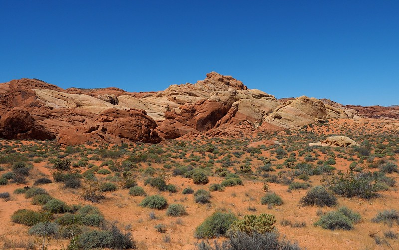 The scenery at Valley of Fire, Nevada.