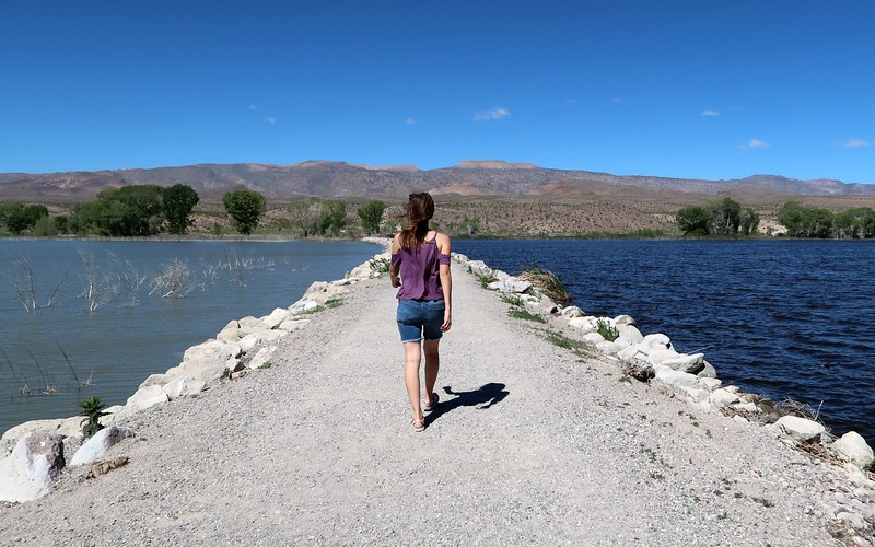Another fun nature escape in Nevada was visiting Pahranagat National Wildlife Refuge