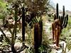 AZ-Superior-Boyce Thompson Arboretum-2002-04-27-0008