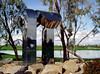 AZ-Chandler-Art-2005-02-20-0001