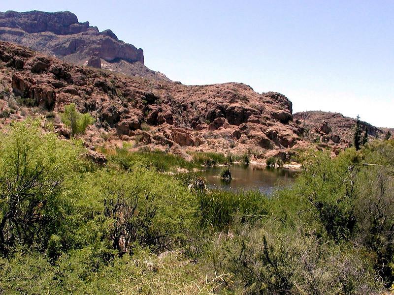 AZ-Superior-Boyce Thompson Arboretum-2002-04-27-0020
