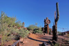 AZ-Apache Junction-Hwy 88-Goldfield-2005-09-17-0005