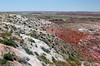 AZ-Petrified Forest National Park-Lacey Point-2005-05-22-0003