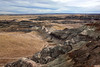 AZ-Petrified Forest National Park-Blue Mesa-2008-01-05-0002