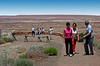 AZ-Petrified Forest National Park-Tawa Point-2005-05-22-0001